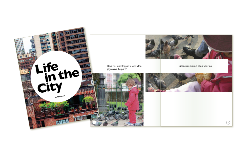 Life in the City booklet for Kaplan University